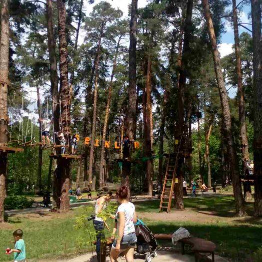 Строительство веревочного парка в Киеве (Парк Партизанской славы)